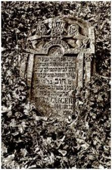 Kirkut w Jarosławiu III [Fotografia]