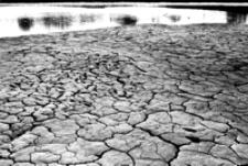 Oczyszczalnia ścieków w cukrowni [Fotografia]