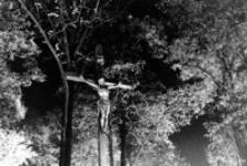 Cmentarz [Fotografia]