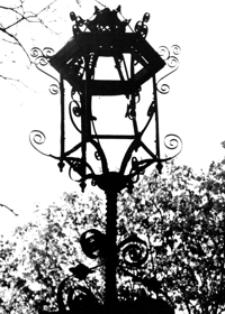 Latarnia w parku [Fotografia]