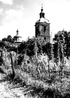 Zabytkowa wieża [Fotografia]