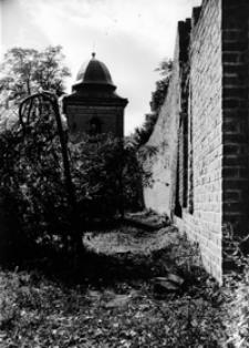 Zabytkowe mury obronne [Fotografia]