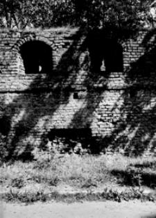 Fragment murów obronnych [Fotografia]