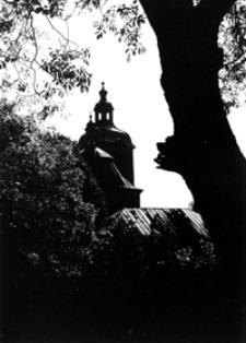 Kościół Farny [Fotografia]