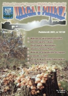 Waga i Miecz : miesięcznik Samorządu i Towarzystwa Miłośników Ziemi Strzyżowskiej. 2001, [R. 11], nr 10 (październik)
