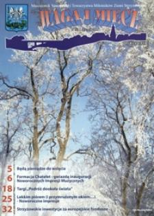 Waga i Miecz : miesięcznik Samorządu i Towarzystwa Miłośników Ziemi Strzyżowskiej. 2010, [R. 20], nr 1 (styczeń)
