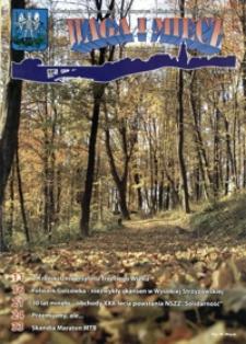 Waga i Miecz : miesięcznik Samorządu i Towarzystwa Miłośników Ziemi Strzyżowskiej. 2010, [R. 20], nr 11 (listopad)