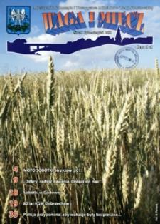 Waga i Miecz : miesięcznik Samorządu i Towarzystwa Miłośników Ziemi Strzyżowskiej. 2011, [R. 21], nr 7-8 (lipiec-sierpień)