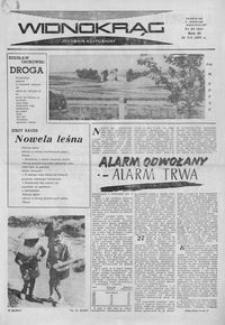 Widnokrąg : tygodnik kulturalny. 1963, nr 28 (14 lipca)