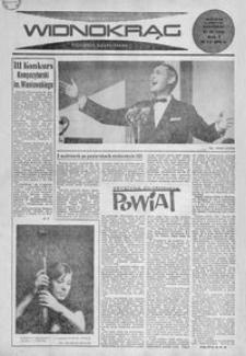 Widnokrąg : tygodnik kulturalny. 1965, nr 28 (18 lipca)