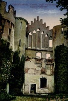 Dębica-Zawada. Zamek, część wschodnia = Schloss Ostfront [Pocztówka]