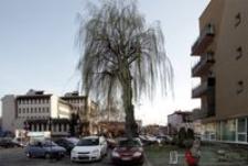 Skwerek przy ul. Fredry (widok w kier. ul. Głowackiego) [Fotografia]