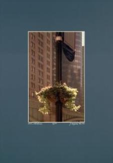 [Barwy Manhattanu nr 41] [Fotografia]
