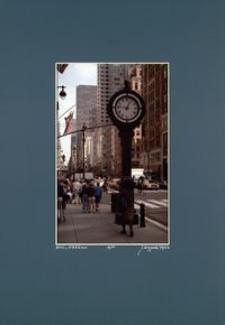 [Barwy Manhattanu nr 55] [Fotografia]