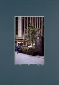 [Barwy Manhattanu nr 60] [Fotografia]