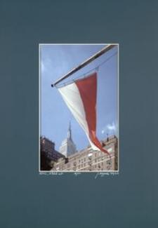 [Barwy Manhattanu nr 65] [Fotografia]