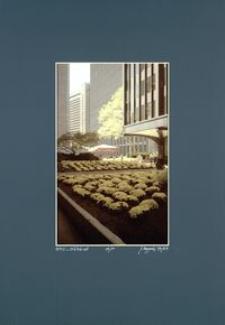 [Barwy Manhattanu nr 77] [Fotografia]