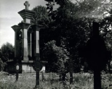[Nowy Żmigród pow. jasielski. Cmentarz wojenny nr 8 z I wojny światowej] [Fotografia]