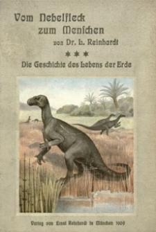 Vom Nebelfleck zum Menschen : Die Geschichte des Lebens der Erde. Bd. 3