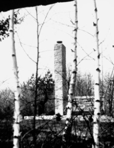 """[Pustków pow. dębicki. Pomnik """"Pamięci pomordowanych przez hitlerowców w obozie zagłady Pustków w latach 1940-1944"""" nr 1] [Fotografia]"""