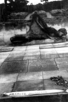 [Dukla pow. krośnieński. Pomnik na cmentarzu wojskowym żołnierzy Armii Radzieckiej i Czechosłowackiej] [Fotografia]