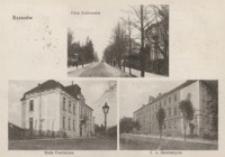 Rzeszów. Ulica Krakowska. Rada Powiatowa. C. k. Seminaryum [Pocztówka]