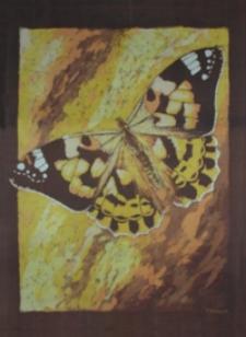 Motyl I [Obraz]