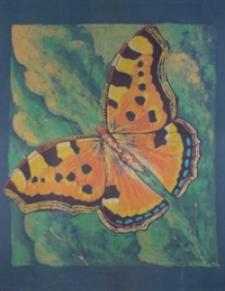 Motyl II [Obraz]