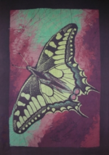 Motyl V [Obraz]