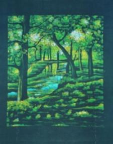 Park na osiedlu Słocina [Obraz]