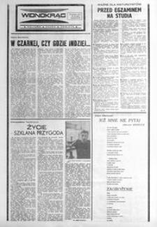 Widnokrąg : kultura, nauka, oświata. 1987, nr 16 (28 kwietnia)