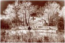 Gorlice-Sokół Nr 88 [Fotografia]