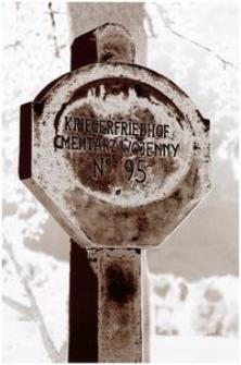Stróżówka – zrekonstruowana tablica informacyjna cmentarza Nr 95 [Fotografia]