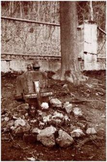 Strzeszyn-Wilczak Nr 104 [Fotografia]