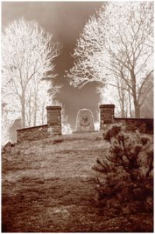 Lichwin-Gródek Nr 185/I [Fotografia]