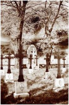 Zbylitowska Góra Nr 199 [Fotografia]